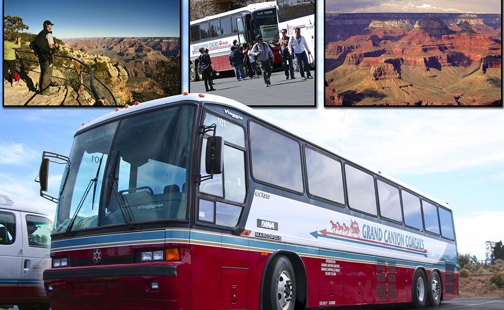 デラックスな大型バスを使用